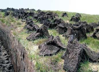 Peat harvesting (c) James Hutton Institute