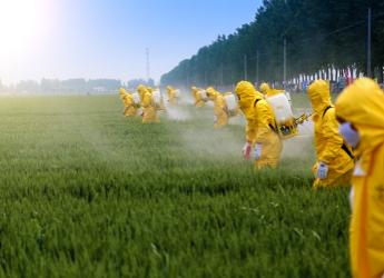 Farmers spraying pesticides in a wheat field (Jinning Li/Shutterstock.com)
