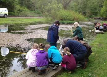 Children carrying out pond dipping