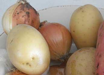 Potatoes and onions © Ilana Shkolnik via PikiWiki (Wikimedia)
