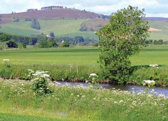 Photograph of a riverbank and hills