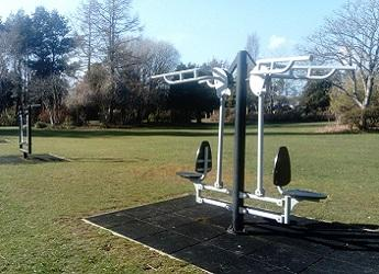 Image of green lawn with our excercise equipment and trees.