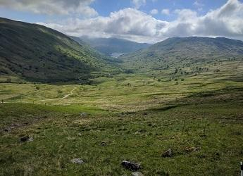 Managing the uplands for biodiversity