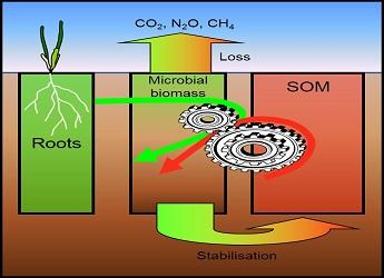 RD 1.1.1 Soil and its ecosystem function