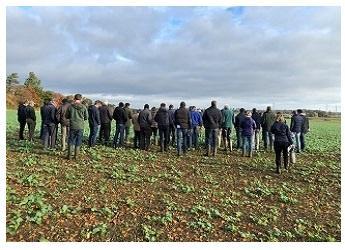 Monitor Farm in-field discussion