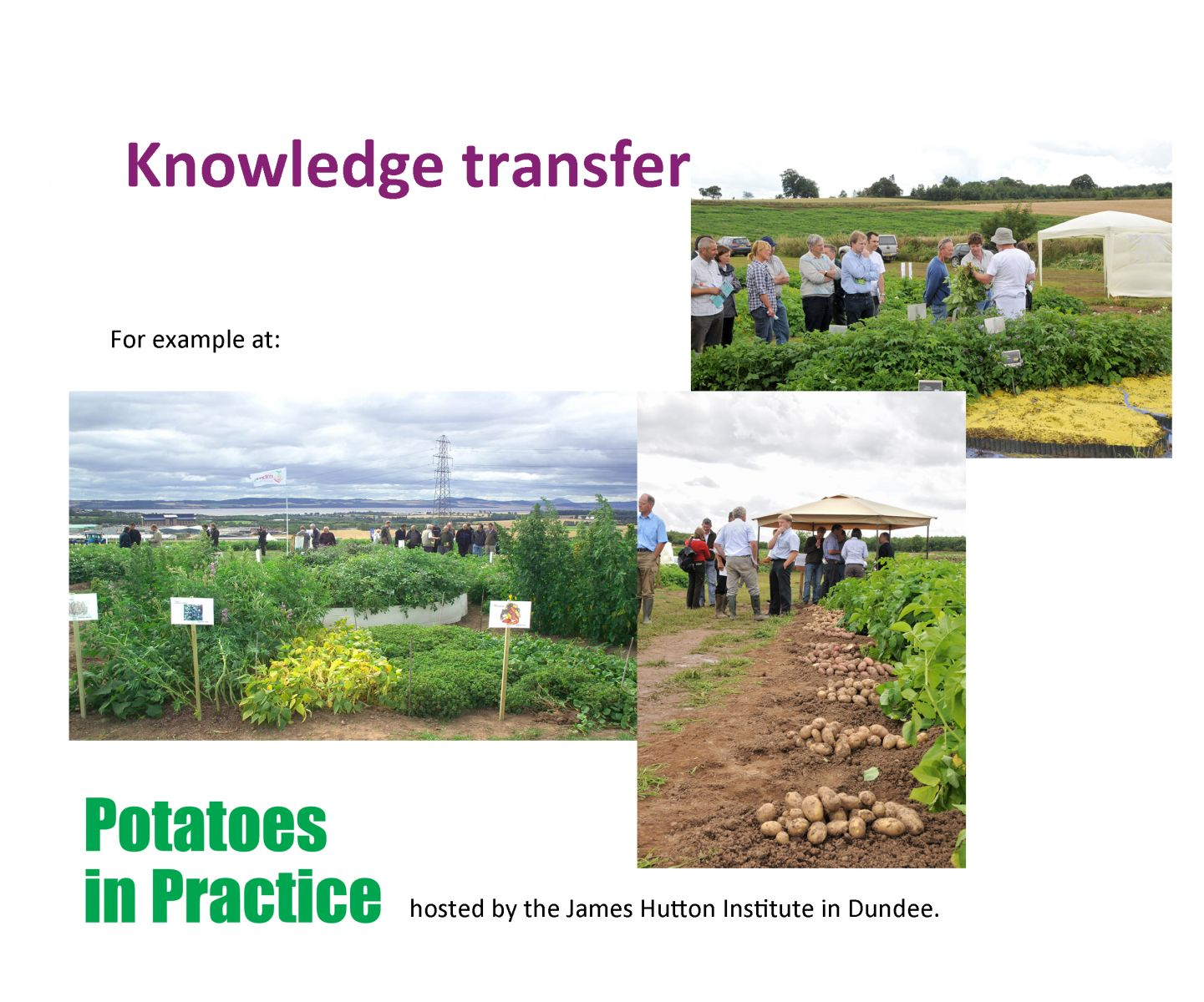 Image result for james hutton potatoes in practice
