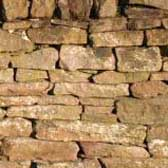Photograph of a new drystane dyke