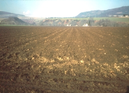Photograph showing deep productive Class 2 land in Easter Ross