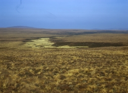 Photograph showing Blanket bog; capable of sustaining only poor rough grazing (Class 6.3w) but priceless in terms of water and carbon storage and biodiversity