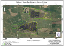 Nutberry Moss and Dornock Flow, Dumfriesshire: Survey Points; Scottish Peat Survey sites, Scottish Peat Committee and Macaulay Institute for Soil Research