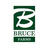 Image of the Bruce Farms logo - link to the Bruce Farms website (opens in a new window)