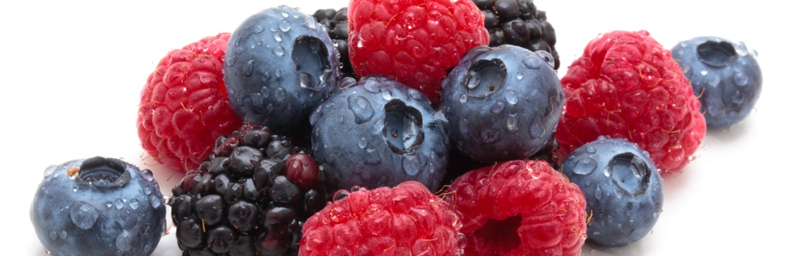 The latest research on soft fruit will be showcased at Fruit for the Future 2019