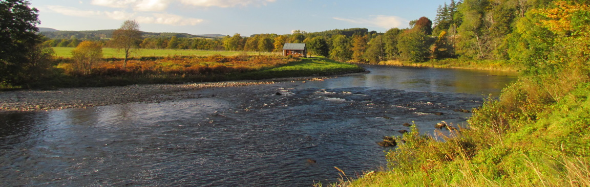Image of the River Dee in summer