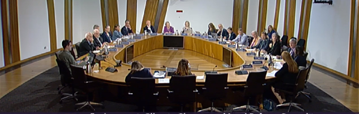 Session of the ECCLR Committee in the Scottish Parliament
