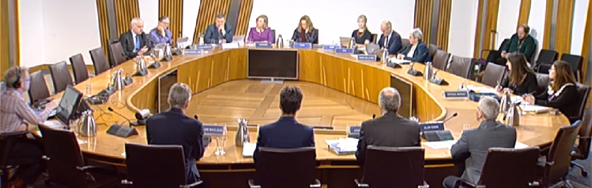 Screenshot of parliamentary session as shown on Scottish Parliament TV