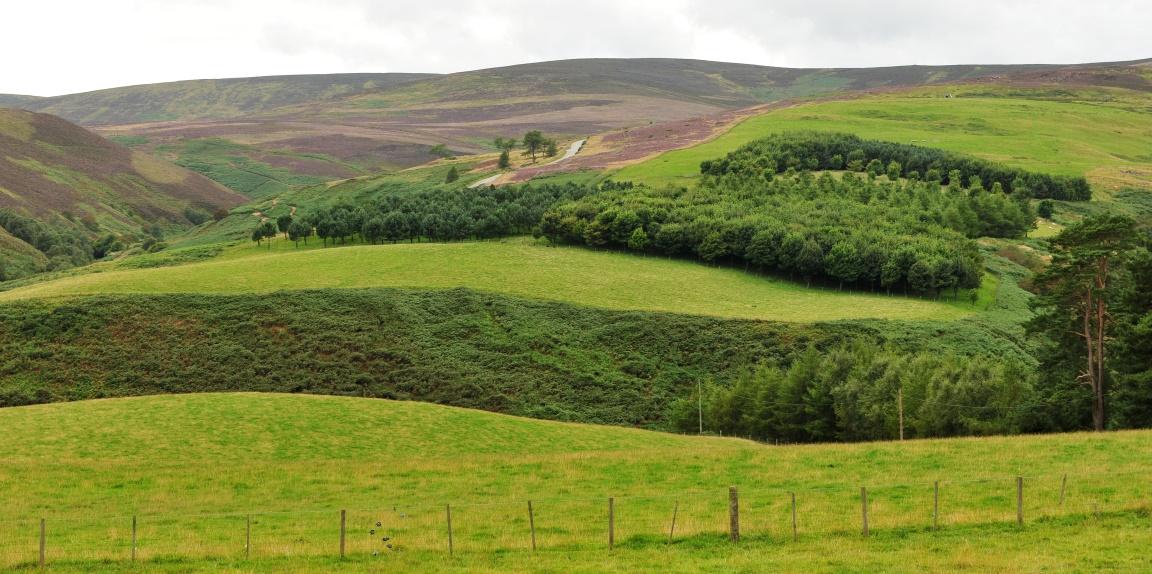 Glensaugh farm (c) James Hutton Institute