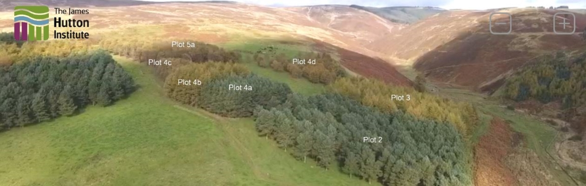 Snapshot of our virtual tour of agroforestry at Glensaugh