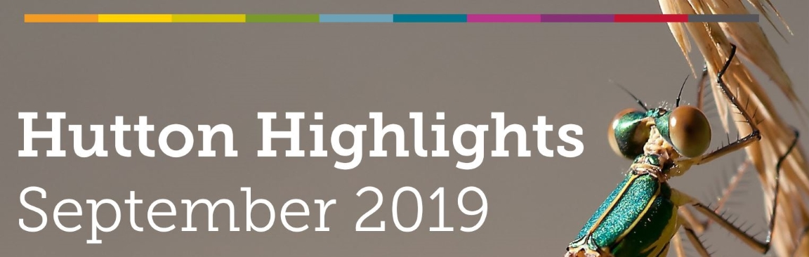 Hutton Highlights, September 2019 (c) James Hutton Institute