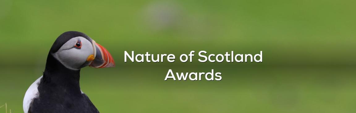 Nature of Scotland Awards promotional image