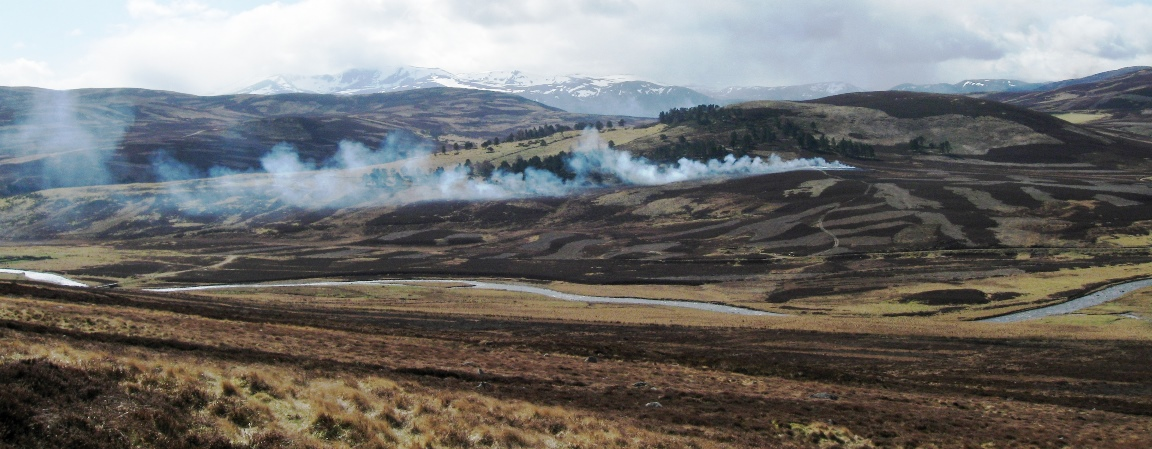 Heather burning at Glen Gairn (c) James Hutton Institute