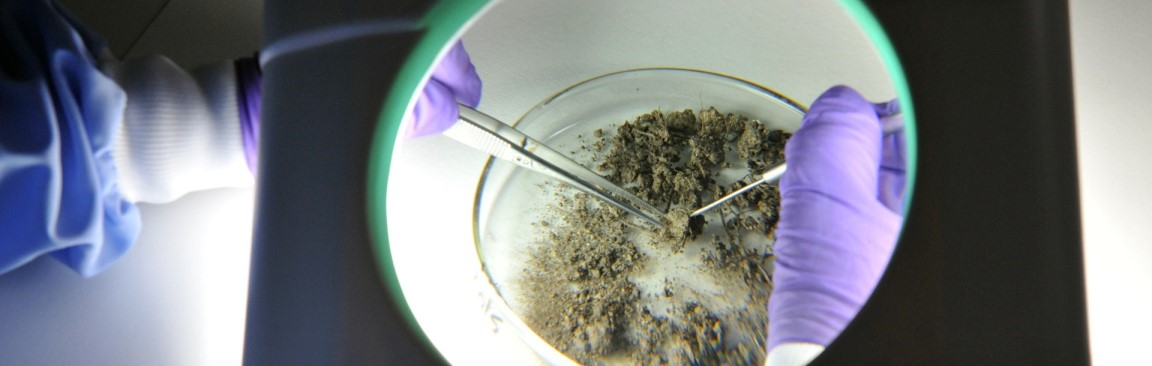 Soil research at the James Hutton Institute