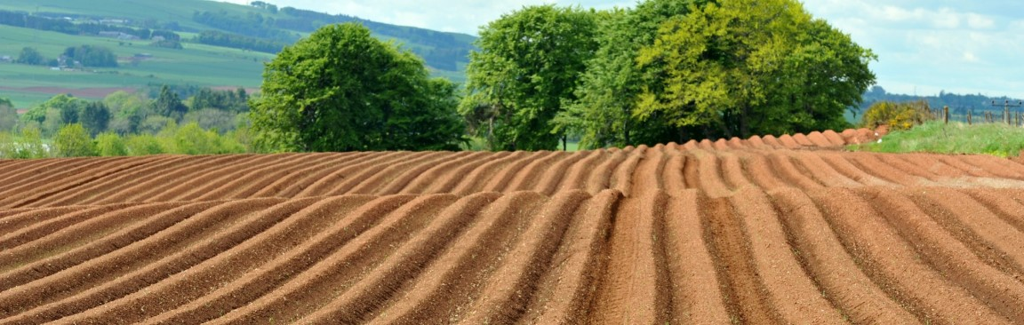 Soils, our most precious resource (c) James Hutton Institute