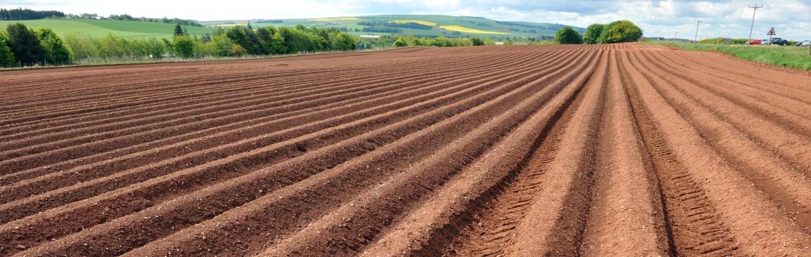 Soil furrows (c) James Hutton Institute
