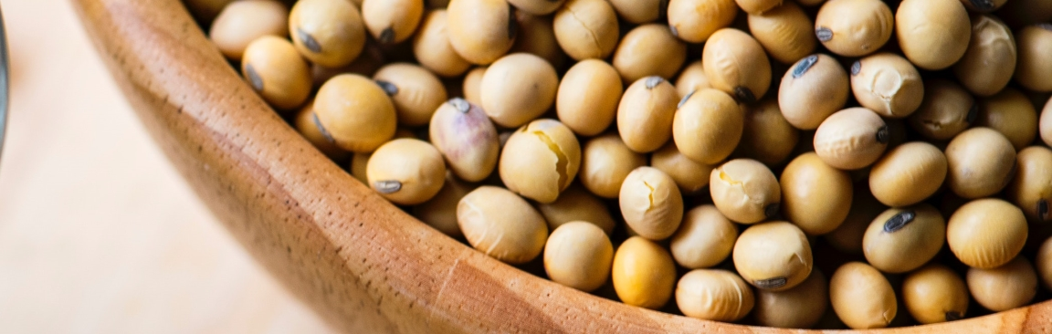Soybeans are a source of plant-based lysine (Photo by rawpixel.com from Pexels)