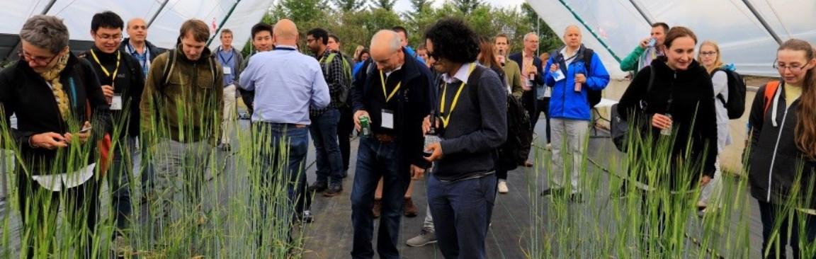 Tour of barley mutants during iBMW2018 (c) James Hutton Institute