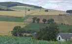 Photograph of fields and hills