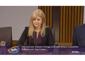 Dr Annie McKee taking part in the ECCLR Committee parliamentary session