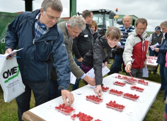 Fruit for the Future is the Institute's long-running soft fruit themed event