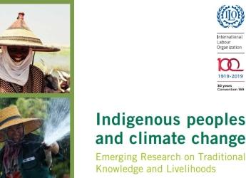 Cover of new ILO book