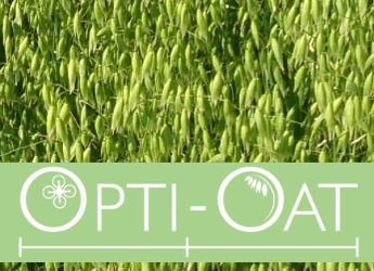 Opti-Oat researchers have developed the first UK Oat Growth Guide