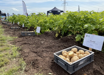 James Hutton Limited's exhibition plot at Potatoes in Practice