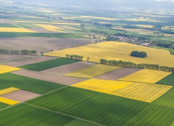 Harvest fields in Poland (Marius Szczygiel/Shutterstock.com)