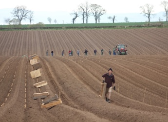 Potato harvest at Balruddery (c) James Hutton Institute