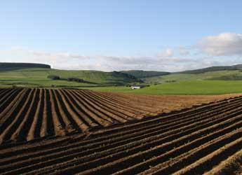 Ploughed field with forestry in background (c) James Hutton Institute