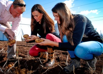 Agri students are invited to participate in new research (c) James Hutton Inst
