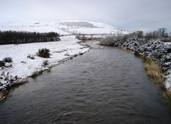 Image showing the Yetholm Mains, Bowmont Water, Scottish Borders