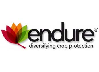 Endure logo