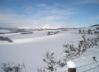 Image showing winter landscape