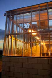 Photograph of a glasshouse at dusk on the Dundee site