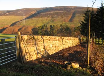 Photograph of dyke at the Glensaugh Research Farm