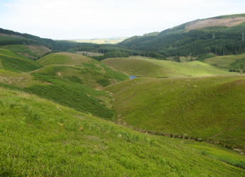 Photograph of a hillside at Glensaugh