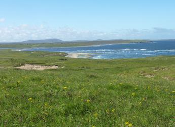 Image showing crofting landscape on Lewis