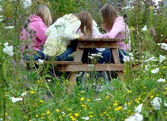 Photograph of children sitting in The Living Field community garden