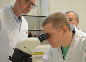 Photograph of researcher examining a sample in the laboratory