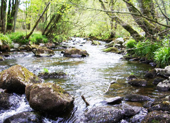 Catchment typologies of risk and resilience