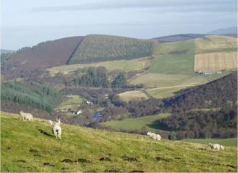 Image showing a landscape